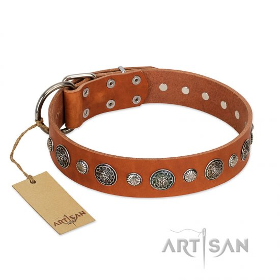 """Natural Beauty"" FDT Artisan Tan Leather Collie Collar with Shining Silver-like Studs"