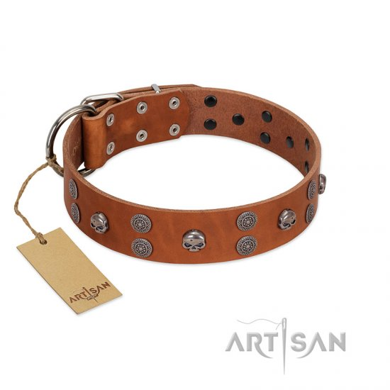 """Road Rider"" FDT Artisan Tan Leather Collie Collar with Old Silver-like Skulls and Medallions"