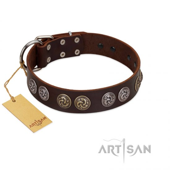"""Treasure Hunter"" FDT Artisan Brown Leather Collie Collar with Old-Bronze-like and Silvery Medallions"