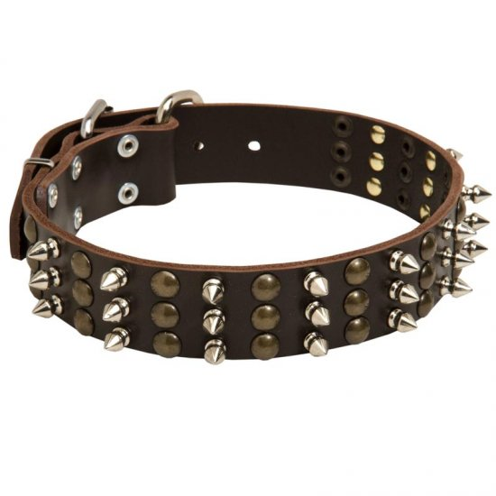Collie Spikes and Studs Rows Leather Dog Collar