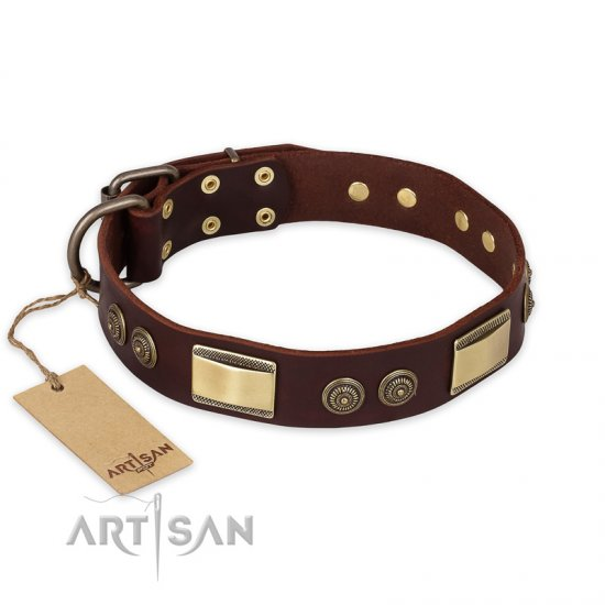 """Golden Stones"" FDT Artisan Brown Leather Collie Collar with Old Bronze Look Plates and Circles"