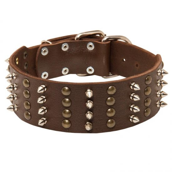 Extra Wide Leather Spiked and Studded Collie Collar