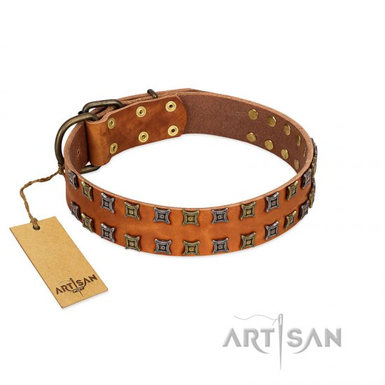 """Terra-cotta"" FDT Artisan Tan Leather Collie Collar with Two Rows of Studs"
