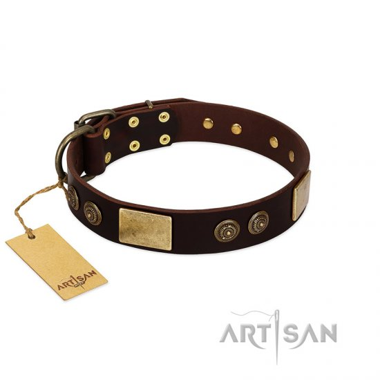 """Bow-Wow Effect"" FDT Artisan Brown Leather Collie Collar with Plates and Ornate Studs"