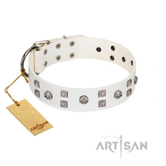 """Rock the Sky"" Durable FDT Artisan White Leather Collie Collar with Chrome-plated Decorations"