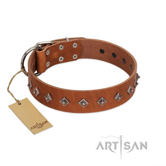 """Broadway"" Handmade FDT Artisan Tan Leather Collie Collar with Dotted Pyramids"
