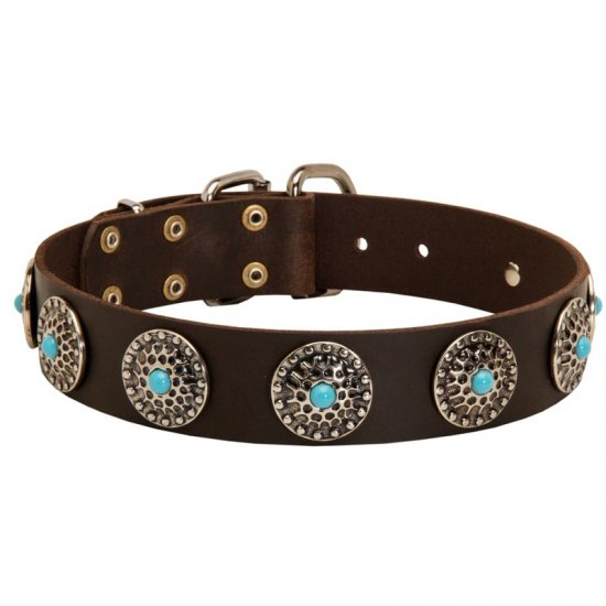 Leather Collie Collar with Blue Stones for Stylish Walking
