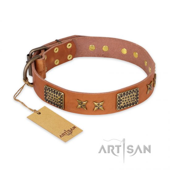 """Cosmic Traveller"" FDT Artisan Adorned Leather Collie Collar with Old Bronze-Plated Stars and Plates"