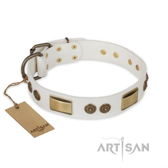 """Golden Avalanche"" FDT Artisan White Leather Collie Collar with Old Bronze Look Plates and Circles"