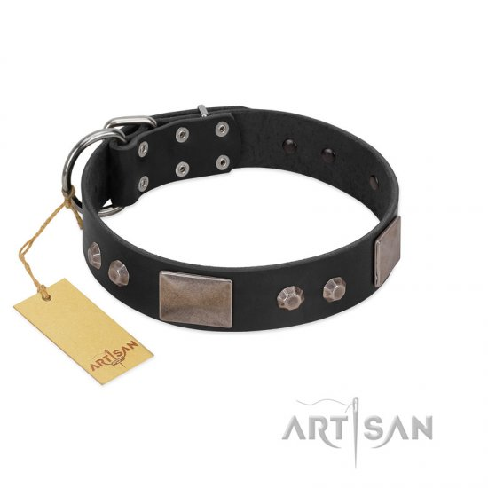 """Square Stars"" Modern FDT Artisan Black Leather Collie Collar with Square Plates and Studs"