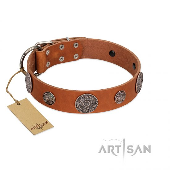 """Foxy Nature"" FDT Artisan Tan Leather Collie Collar with Chrome Plated Brooches"