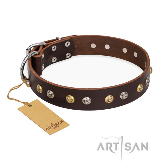 """Golden""n""Silver Luxury"" FDT Artisan Leather Collie Collar with Engraved Studs"