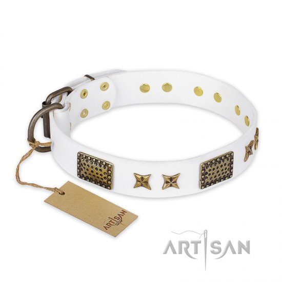 """Hour of Triumph"" FDT Artisan White Leather Collie Collar"