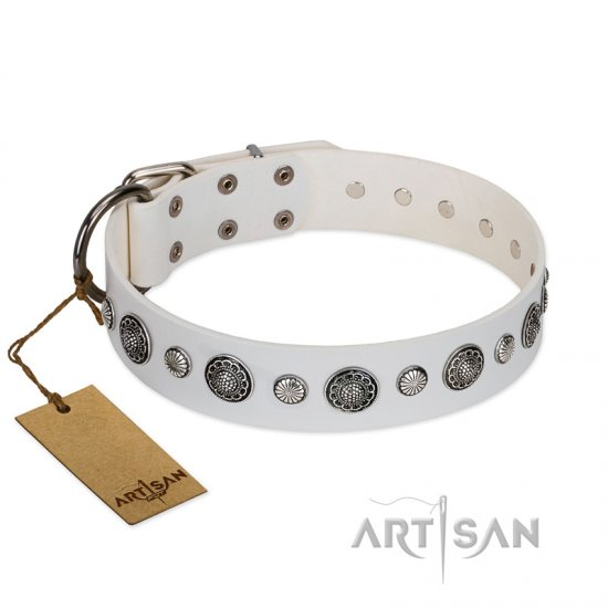 """Fluff-Stuff Beauty"" FDT Artisan White Leather Collie Collar with Silver-like Studs and Conchos"