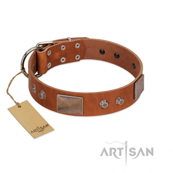 """Great Obelisk"" Handcrafted FDT Artisan Tan Leather Collie Collar with Large Plates and Pyramids"