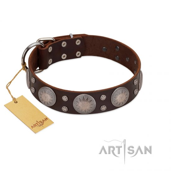"""Imperial Legate"" FDT Artisan Brown Leather Collie Collar with Big Round Plates"