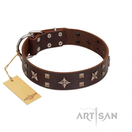 """Stars in Sands"" Modern FDT Artisan Brown Leather Collie Collar with Studs and Stars"
