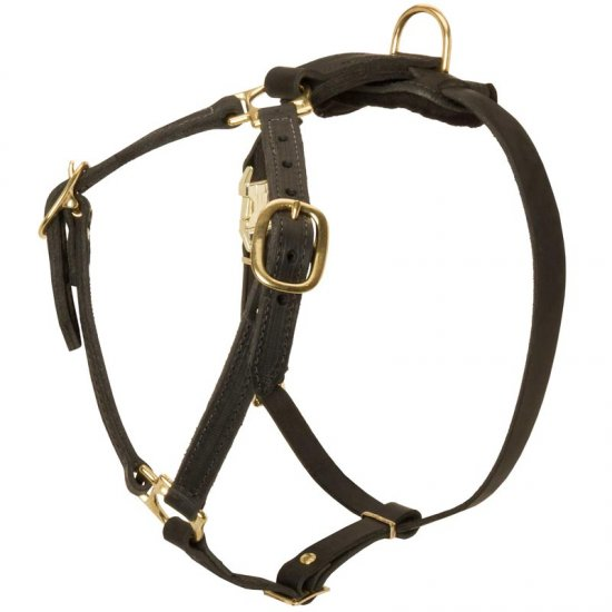 Y-Shaped Leather Collie Harness for Tracking and Training