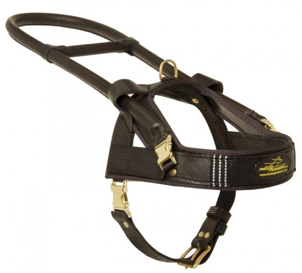 Guide and Assistance Leather Collie Harness