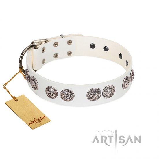 """Eye Candy"" Appealing FDT Artisan White Leather Collie Collar with Chrome Plated Medallions"