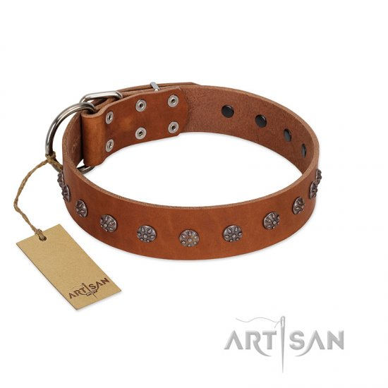 """Daintiness"" Designer Handmade FDT Artisan Tan Leather Collie Collar with Silver-Like Adornments"