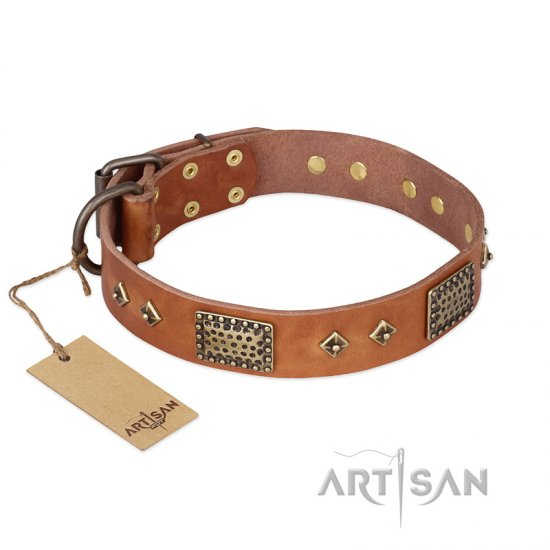 """Catchy Look"" FDT Artisan Decorated Tan Leather Collie Collar"
