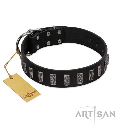 """Black Prince"" Handmade FDT Artisan Black Leather Collie Collar with Silver-Like Adornments"