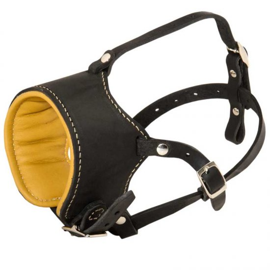 Snout Short Leather Collie Muzzle Padded with Nappa Leather