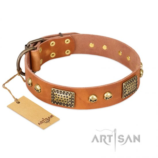 """Saucy Nature"" FDT Artisan Tan Leather Collie Collar with Old Bronze Look Plates and Skulls"