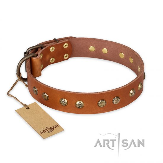 """Spring Flavor"" FDT Artisan Adorned Leather Collie Collar with Old Bronze-Plated Engraved Studs"