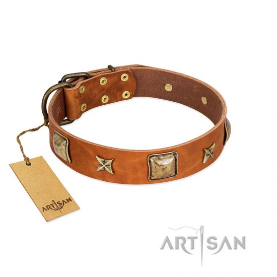 """Celtic Tunes"" FDT Artisan Tan Leather Collie Collar Adorned with Stars and Squares"
