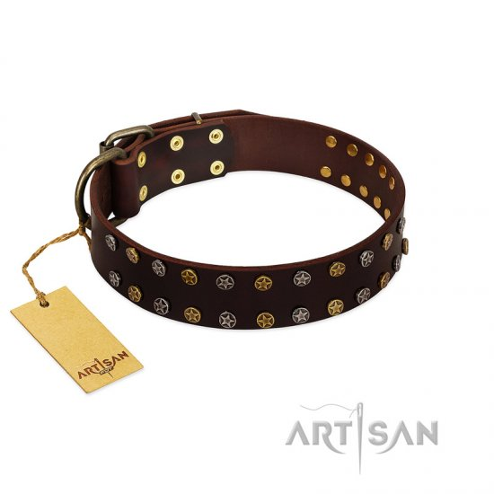 """To the Moon and Back"" FDT Artisan Brown Leather Collie Collar with Bronze-like Star Studs"