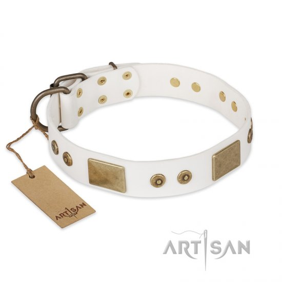 """Unforgettable Impress"" FDT Artisan Decorated Leather Collie Collar with Decorations"