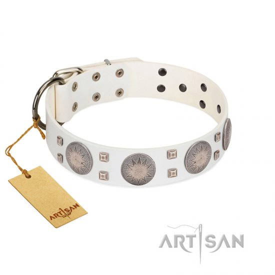 """Mighty Shields"" FDT Artisan White Leather Collie Collar with Chrome Plated Shields and Square Studs"