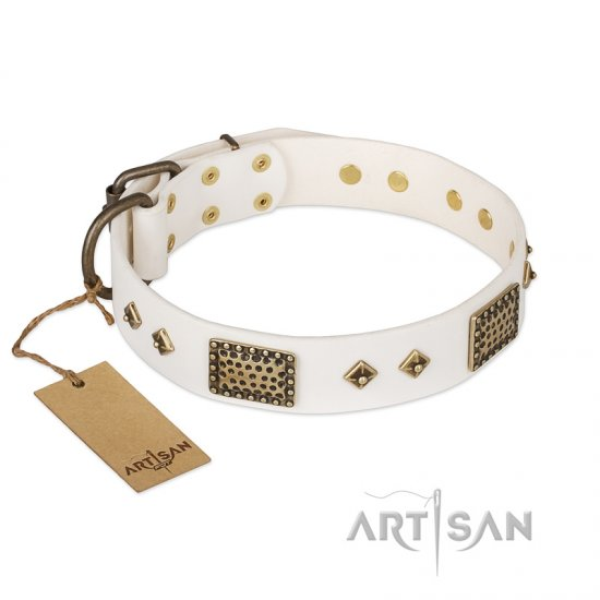 """Snow-covered Gold"" FDT Artisan White Leather Collie Collar"