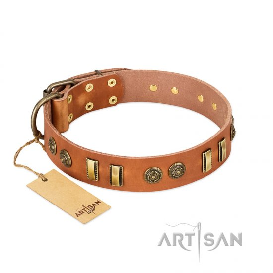 """Natural Beauty"" FDT Artisan Tan Leather Collie Collar with Old Bronze-like Circles and Plates"