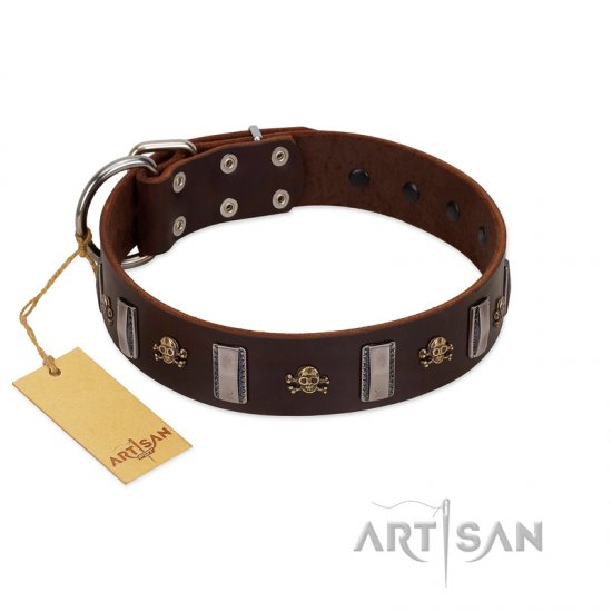 """War Chief"" FDT Artisan Genuine Brown Leather Collie Collar with Skulls and Plates"
