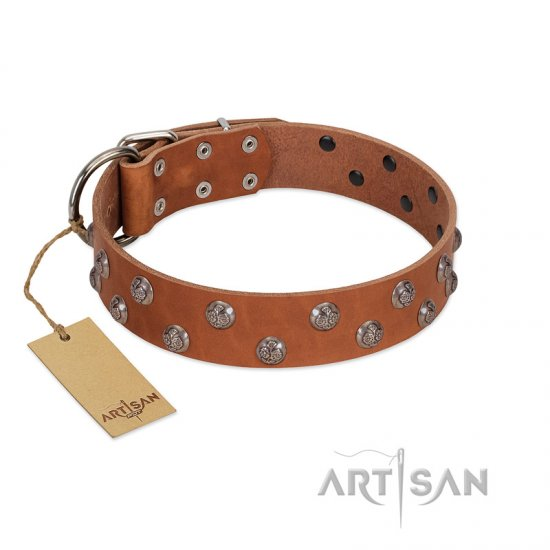 """Waltz of the Flowers"" Handmade FDT Artisan Tan Leather Collie Collar with Chrome-plated Engraved Studs"