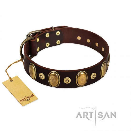 """Retro Pusle"" FDT Artisan Brown Leather Collie Collar with Old Bronze-like Studs and Oval Brooches"