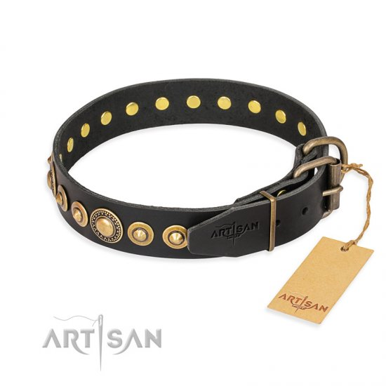 """Gold Mine"" FDT Artisan Black Leather Collie Collar with Amazing Bronze-Plated Round Studs"