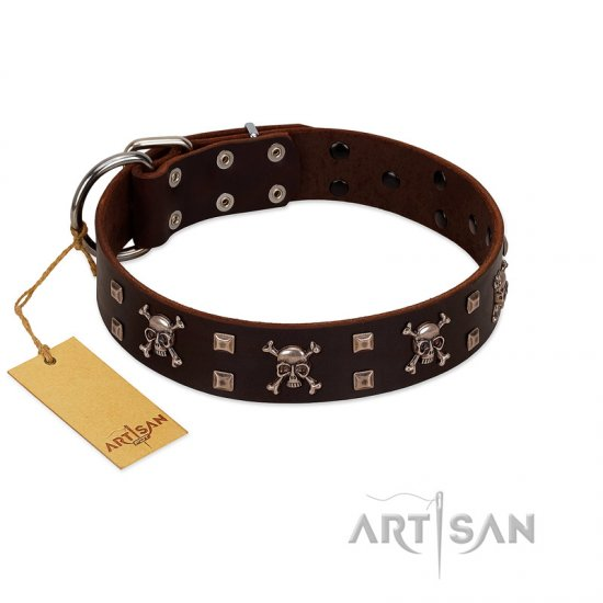 """Menacing Allure"" FDT Artisan Brown Leather Collie Collar Embellished with Silvery Crossbones and Square Studs"