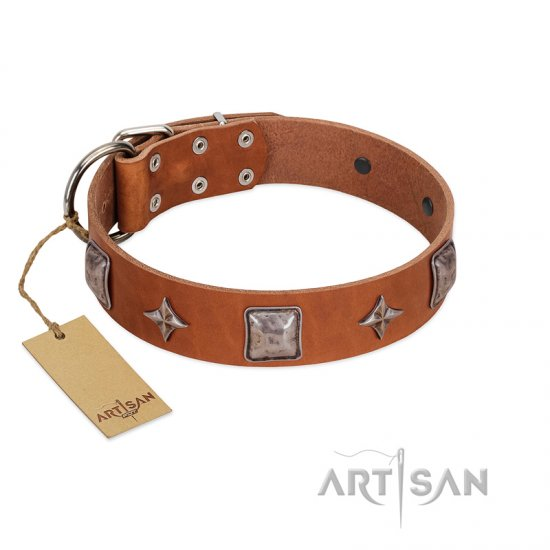 """Lucky Star"" FDT Artisan Tan Leather Collie Collar with Silver-Like Embellishments"
