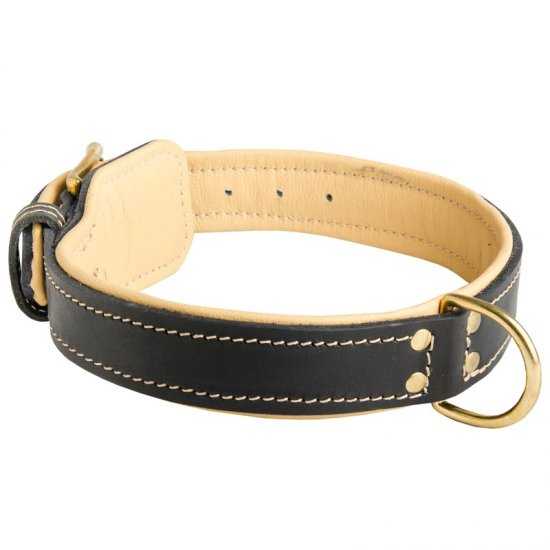 Royal Design Nappa Padded Leather Collie Collar
