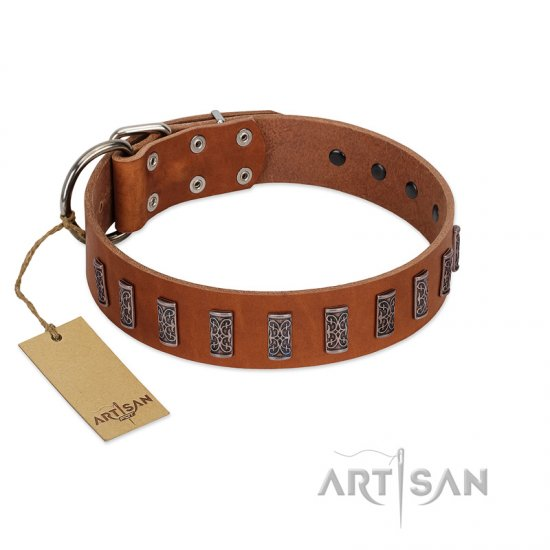 """Silver Century"" Fashionable FDT Artisan Tan Leather Collie Collar with Silver-Like Plates"