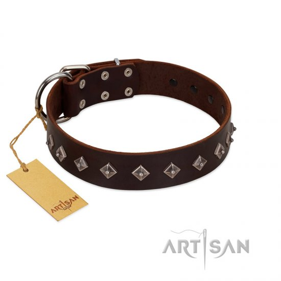 """Boundless Energy"" Premium Quality FDT Artisan Brown Designer Leather Collie Collar with Small Pyramids"