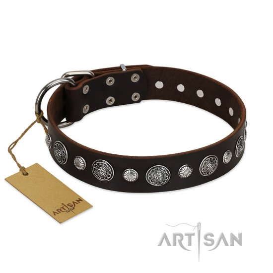 """Victory Ode"" FDT Artisan Brown Leather Collie Collar with Silver-like Plated Decorations"