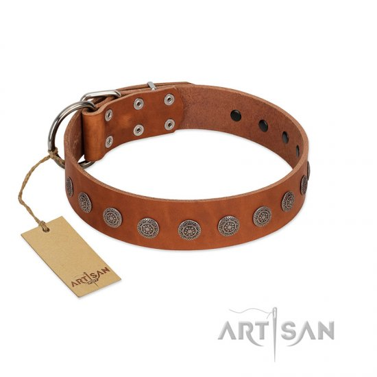 """Lucky Star"" Handmade FDT Artisan Designer Tan Leather Collie Collar with Round Plates"