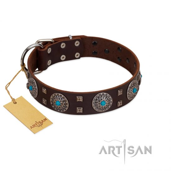 """Hypnotic Stones"" FDT Artisan Brown Leather Collie Collar with Chrome Plated Brooches and Square Studs"
