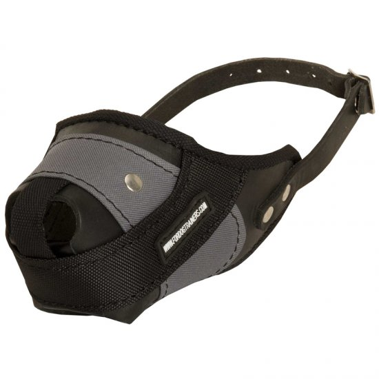 Protection Training Collie Muzzle Made of Nylon and Leather