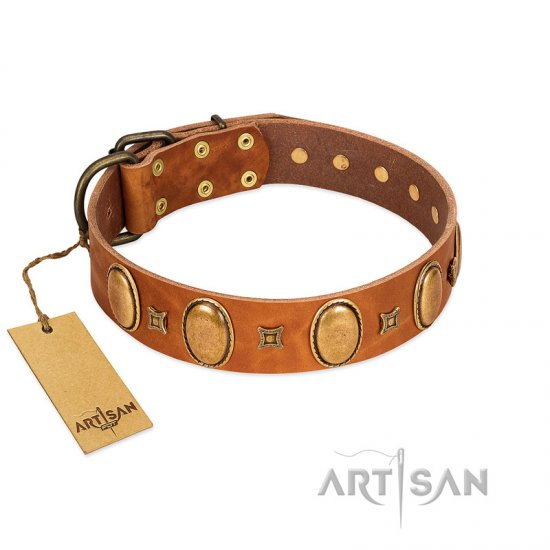 """Glossy Autumn"" Designer Handmade FDT Artisan Tan Leather Collie Collar with Ovals and Studs"